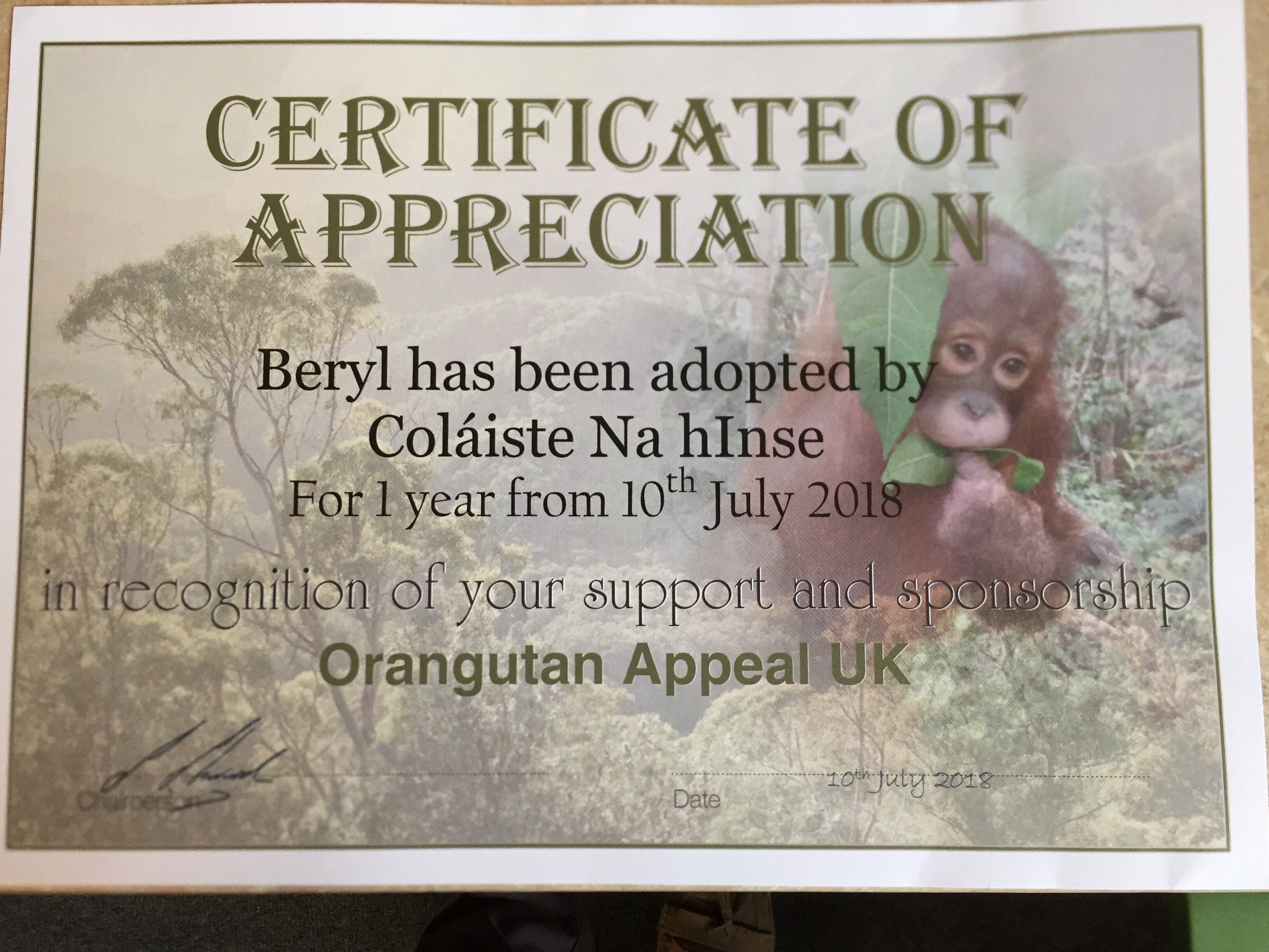 Beryl Adoption Cert